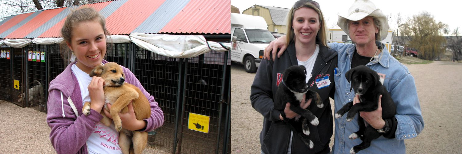 Pictures of Lifeline Puppy Rescue volunteers.